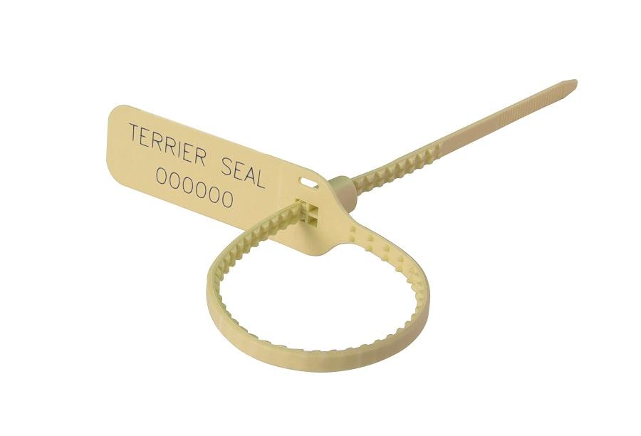 Terrier-Seal
